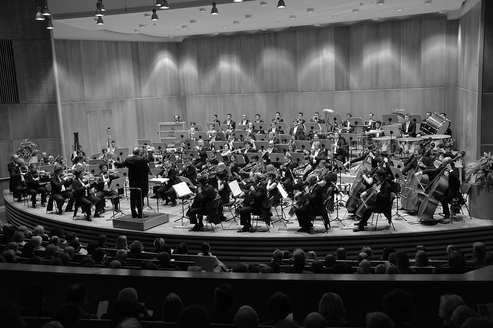 Haydn-Orchster
